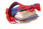 School bag with books — Stock Photo