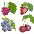 Different berry icon set — Stock Vector