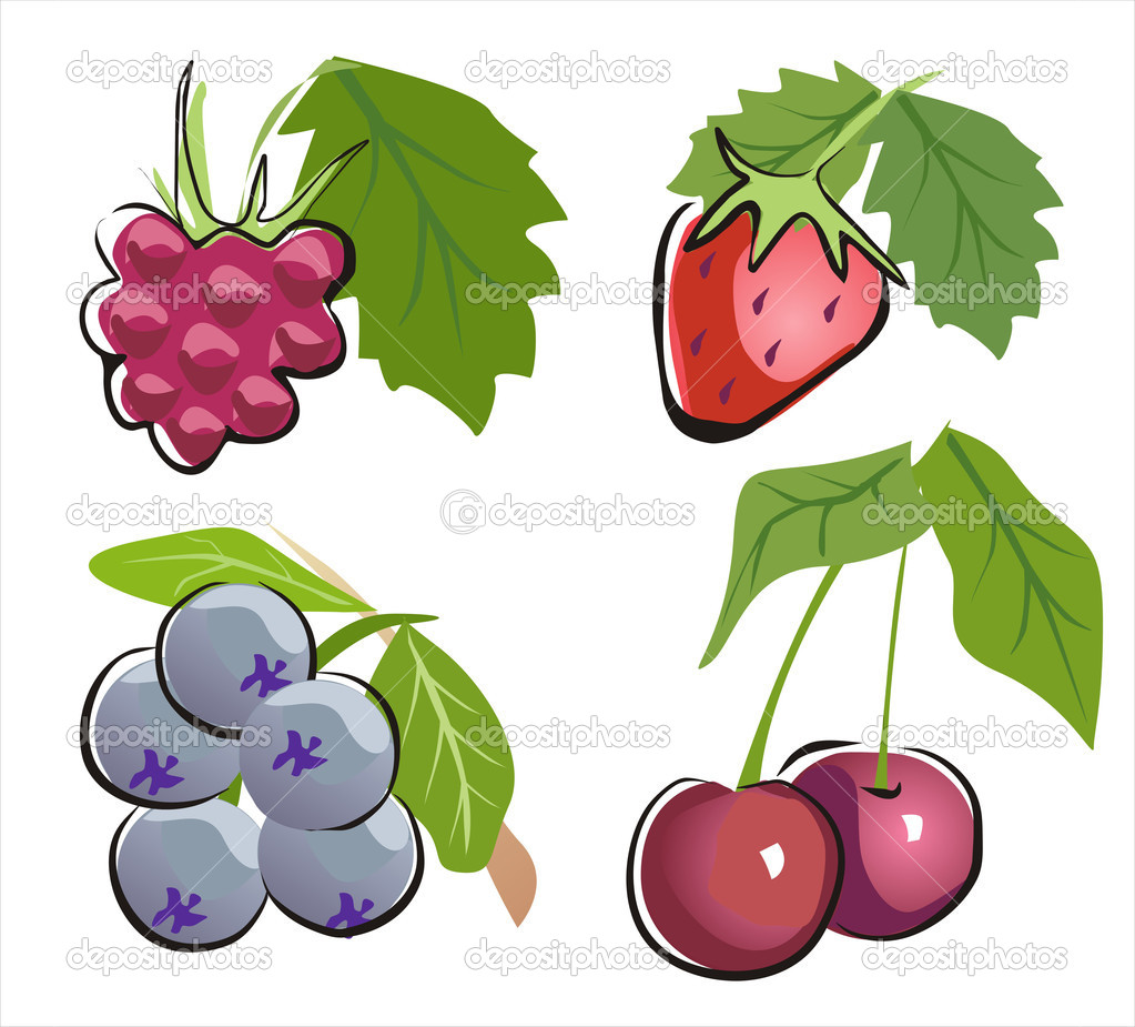  different berry icon set vector illustration in cartoon ctyle  Stock Vector #4954916