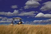 Golf-cart in das hohe gras — Stockfoto