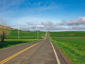 The road less traveled — Stock Photo
