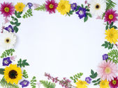 Floral frame-001 — Stock Photo