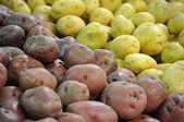 Potatoes — Stockfoto