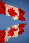 Canadian flag reflects in water — Stock Photo