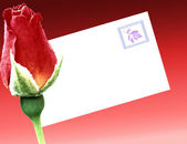 Rose envelope with leaf stamp — Stock Photo