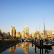 Summer landscape in North Vancouver, BC Canada — Stock Photo