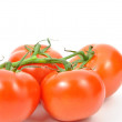 Fresh nature tomatoes — Stock Photo