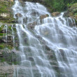 Waterfall in Harrison BC Canada — Stock Photo