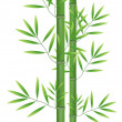 Abstract bamboo leaf background — Stock Photo