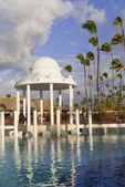 Caribbean wedding — Stock Photo