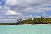 Blue lagoon near Saona island — Stock Photo