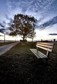 ベンチとストリート ライト — ストック写真