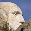 Mount Rushmore South Dakota Black Hills — Stock Photo #4771213