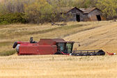 Combining near old granaries Sasktchewan Canada — Stock Photo