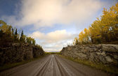 Northern Manitoba road in autumn — Stock Photo