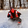 Stock Photo: Snowmobiling Canada