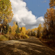 Autumn colors along Northern British Columbia road — Stock Photo