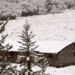 Stock Photo: Abandoned ranch house in winter in the Cypress Hills
