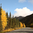 Autumn colors along British Columbia road — Stock Photo