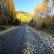 Autumn colors along Northern British Columbia road — Stock Photo #4853393