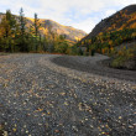 Autumn colors along Northern British Columbia road — Stock Photo