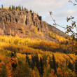 Autumn colored trees on mountain slope in British Columbia — Stock Photo