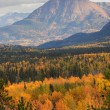 Mountain scenery in British Columbiautumn — Stock Photo #4859400