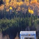 Bridge and colorful trees during British Columbia autumn — Stock Photo