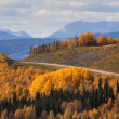 Stock Photo: Road view of the Rocky Mountains