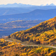 Road view of the Rocky Mountains — Stock Photo