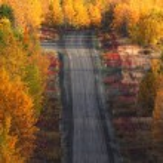 Autumn trees along British Columbia road — Stock Photo