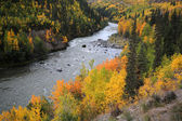 Grand Canyon of Stikine River in Northern British Columbia — Stock Photo