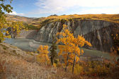 Autumn colors along Stikine River in Northern British Columbia — Stock Photo