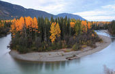 Autumn colors along Northern British Columbia river — Stock Photo