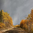 Clouds and autumn leaves along British Columbia backroad — Stock Photo