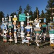 Sign posts forest in Watson Lake Yukon — Stock Photo