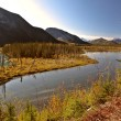 Liard River in British Columbia — Stock Photo