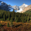 Stock Photo: View of the Rocky Mountains along Icefields Parkway