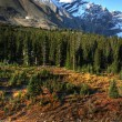 View of the Rocky Mountains along Icefields Parkway — Stock Photo #4861106