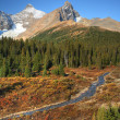 View of the Rocky Mountains along Icefields Parkway — Stock Photo #4861109