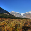 View of the Rocky Mountains along Icefields Parkway — Stock Photo #4861110