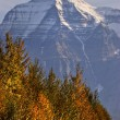 Stock Photo: Mount Robson British Columbia