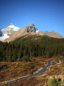 View of the Rocky Mountains along Icefields Parkway — Stock Photo