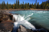 Athabasca Falls in Jasper National Park — Stock Photo