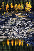 Water reflection of autumn trees along rocky shore — Stock Photo
