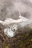 Campo de gelo no urso glaciar nacional parkof columbia britânica — Fotografia Stock