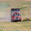 Harvesting fodder in Saskatchewan — Stock Photo #4904190