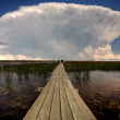 Stock Photo: Cloud formations behind waterfowl blind