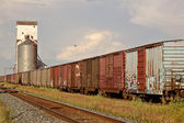 Boxcars parked on siding near grain elevator — Stock Photo