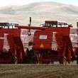 Stock Photo: Two combines sitting idle in field